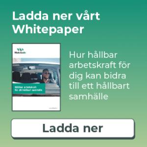 Matchedin Whitepaper